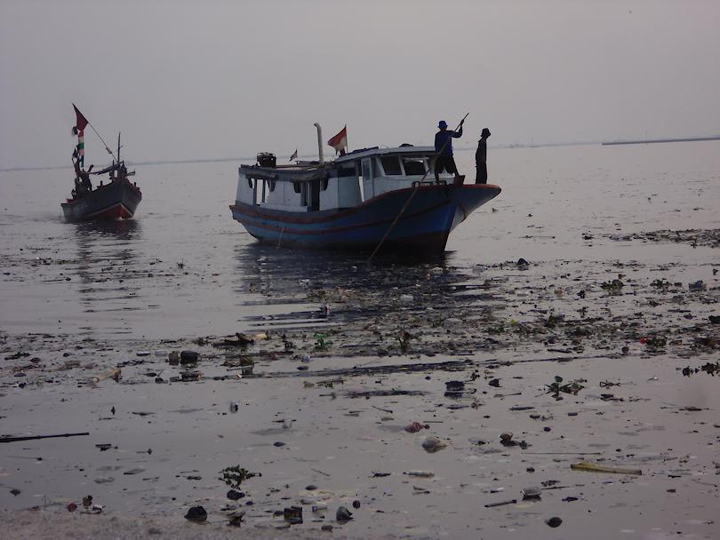 Corangamite marine and coastal biodiversity strategy